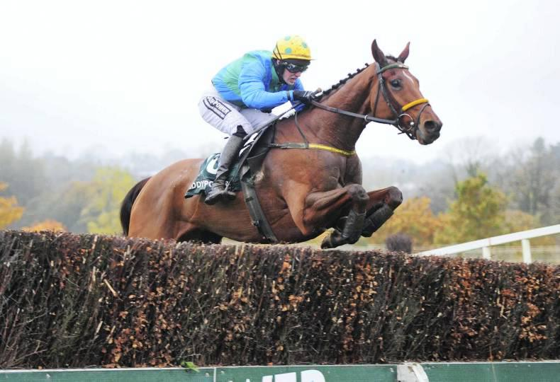 CORK SUNDAY: Tulsa Jack topped the poll for the Grand Alliance Racing Club