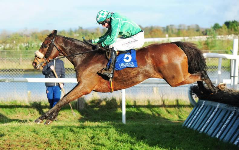 LIMERICK SUNDAY: A good Show from Weld hurdler