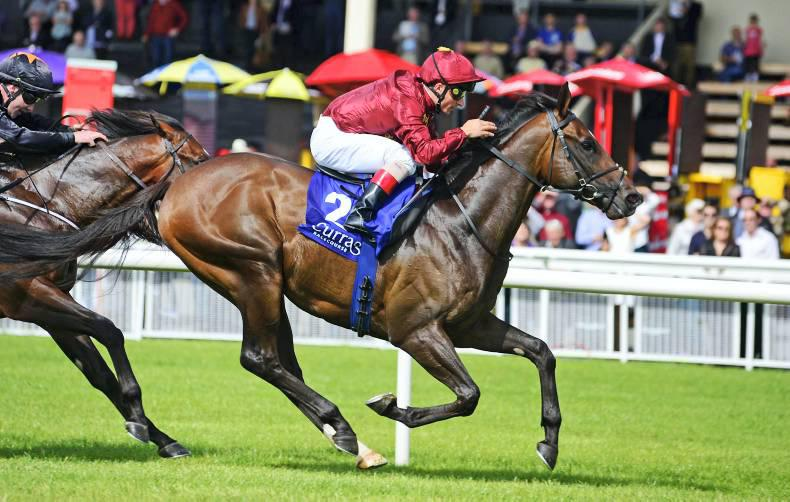 Two new stallions retired to stud