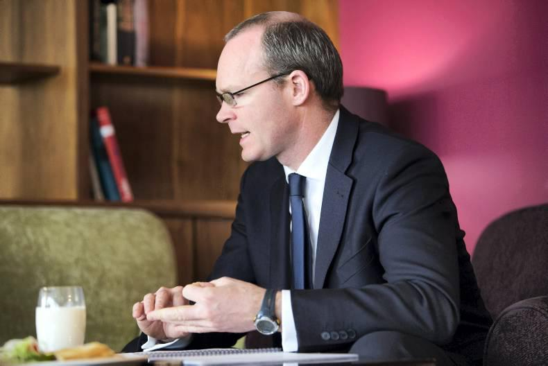 Simon Coveney: Leading the way