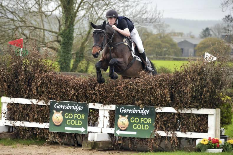 Gorsehill Pearl to remain in Ireland