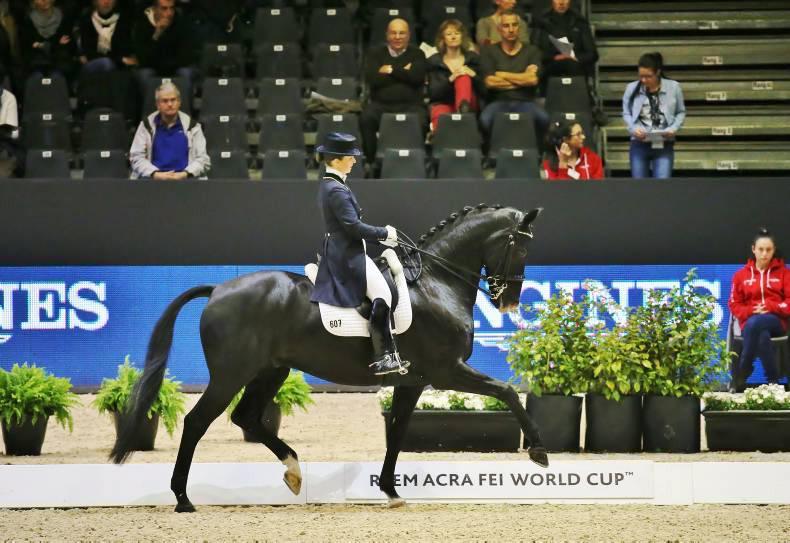 Russian Olympic ban no help to Irish Rio hopes