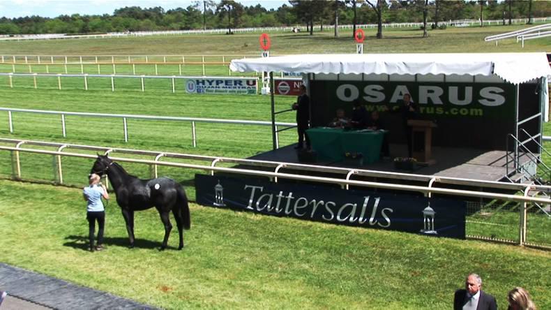 SALES: Low key affair at Osarus