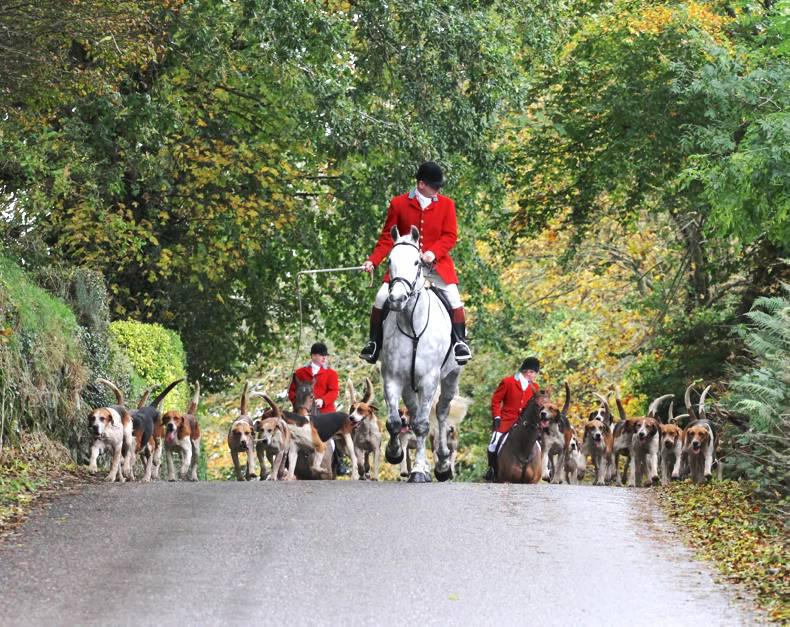 HUNTING:  Tradition and history