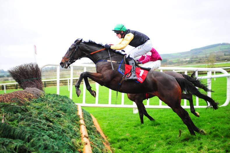 DONN McCLEAN:  Cheltenham novice strong form