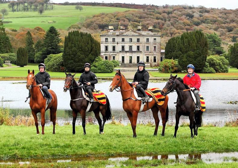 PARROT MOUTH: Curraghmore gallops open for business