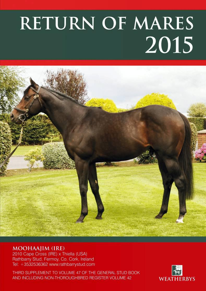 BREEDING INSIGHTS: Comprehensive look at the busiest sires in Ireland & England