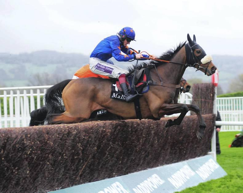 BRITAIN: Wolf on the hunt for hurdle success