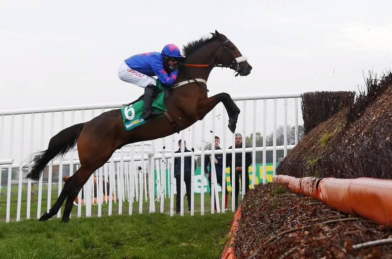 PEDIGREE NOTES: Graded winners for the week ending 22nd November