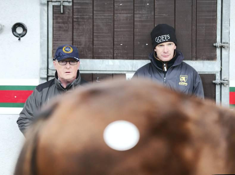 SALES: Henry Beeby pleased as foal sale ends on high note