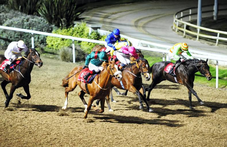 DUNDALK FRIDAY: Another Story learning fast