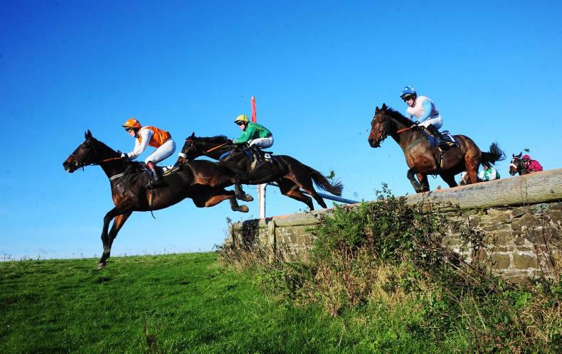 LINGSTOWN SUNDAY: The right horse for the course