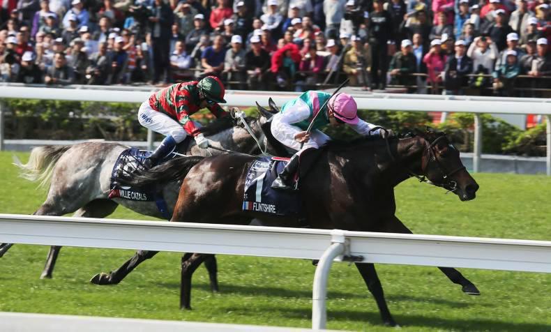 HONG KONG: Three Irish horses invited to run in International Races
