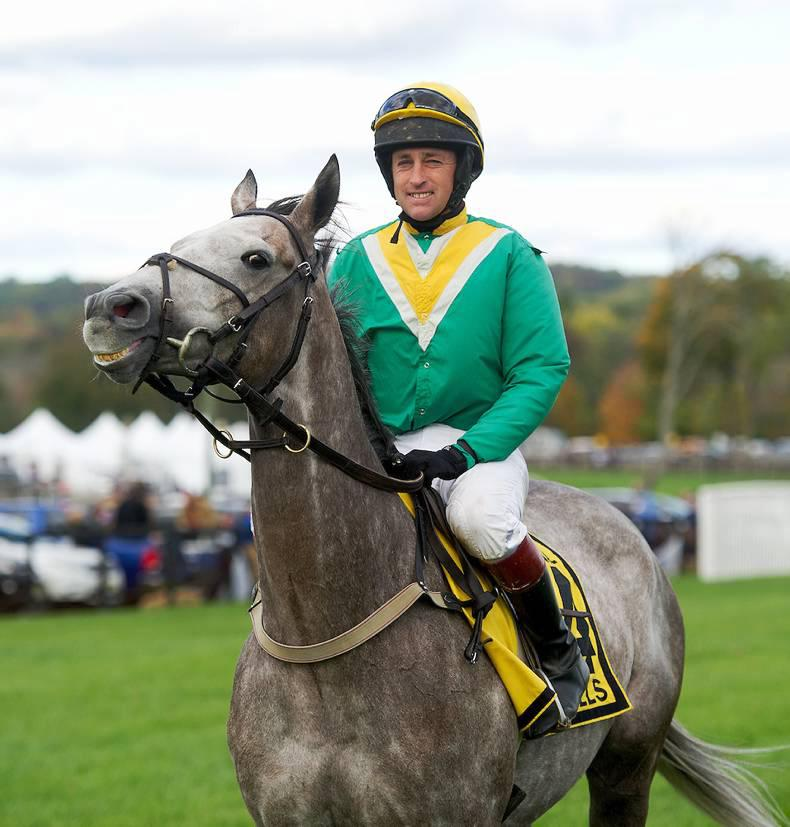 BREEDING INSIGHTS: Irish win with French horse in USA
