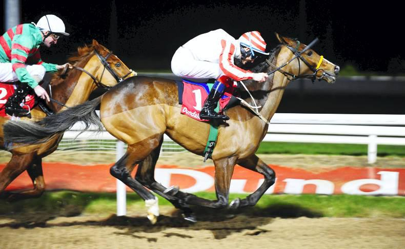 DUNDALK WEDNESDAY: Dodgybingo in the money