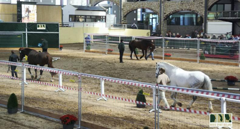 Stallion owners vote for veterinary inspections