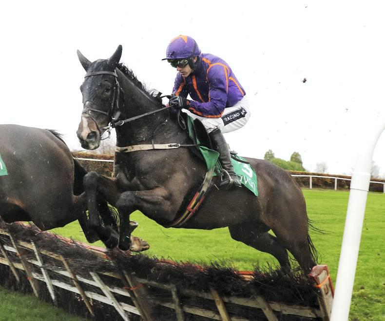 PEDIGREE NOTES: National Hunt graded winners 23rd – 29th November