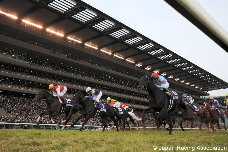 JAPAN:  Pandora's late run snatches Japan Cup