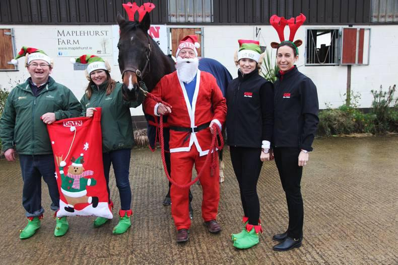 PONY TALES:  Santa Claus comes early for horses in need