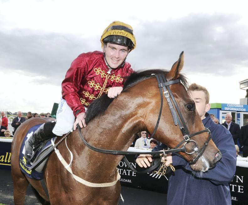 BREEDING INSIGHTS: No Glass ceiling for this filly