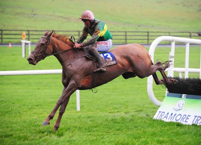 TRAMORE SATURDAY: Great day for punters as Byrnes lights up results