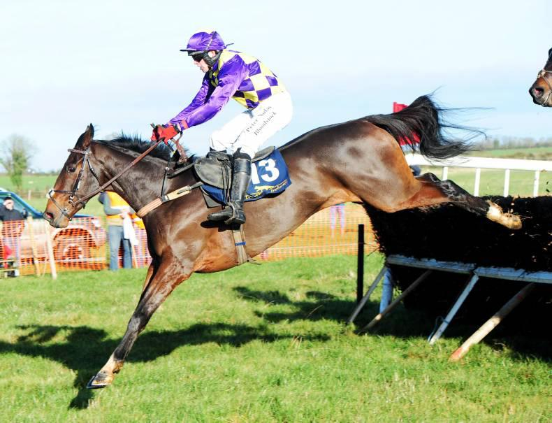 SALES: Cracker of a sale for Goff at Tattersalls Ireland