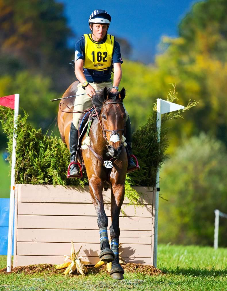 Enduring legacy of the unique Irish-bred horse