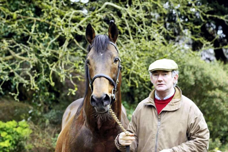 BREEDING INSIGHTS: Kicking King's great career recalled with 100th win
