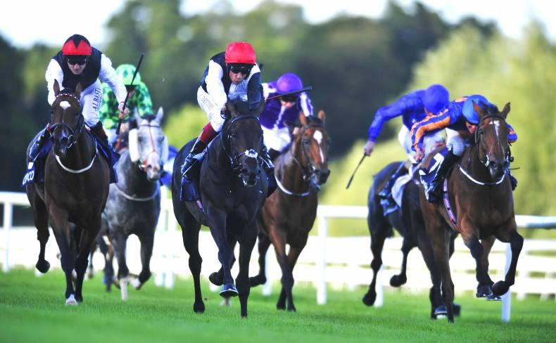 REVIEW 2015 IRELAND FLAT: Quality racing and new talent emerging
