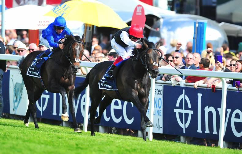 REVIEW OF THE YEAR: BRITAIN FLAT - Hail Gosden's Golden year