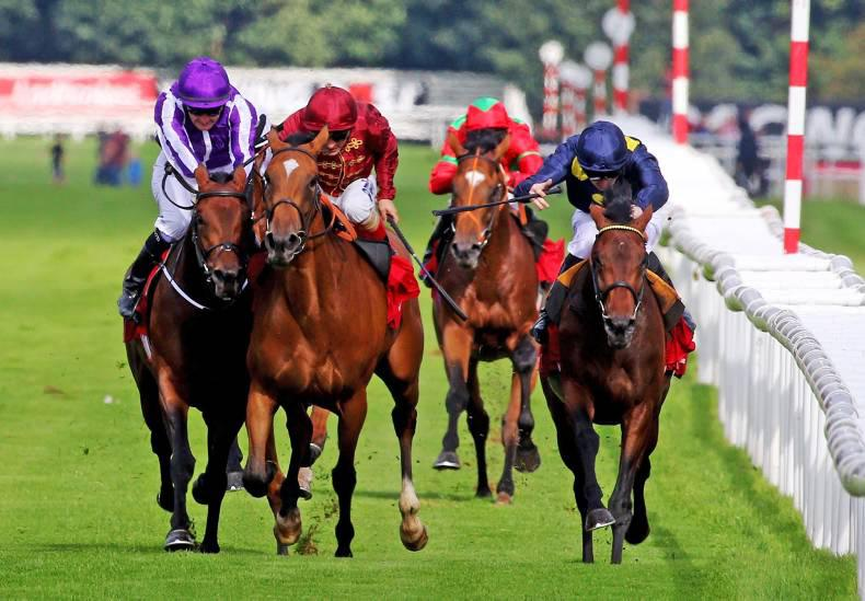 REVIEW OF THE YEAR:  Inquiry drama boosts St Leger story