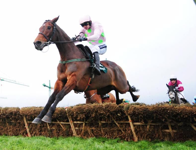 LEOPARDSTOWN SUNDAY: Long Dog edges out Tombstone