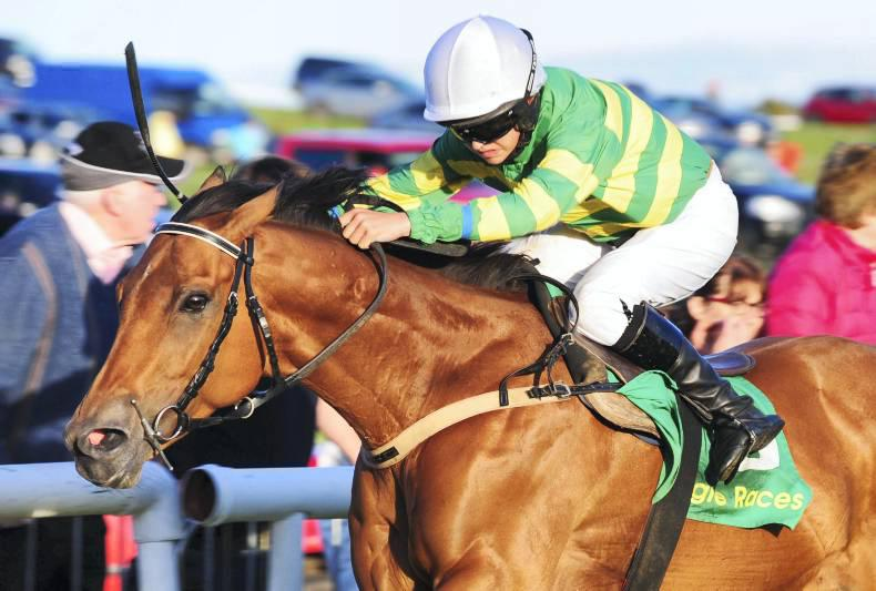 PONY RACING: Sheehys get off to a flyer