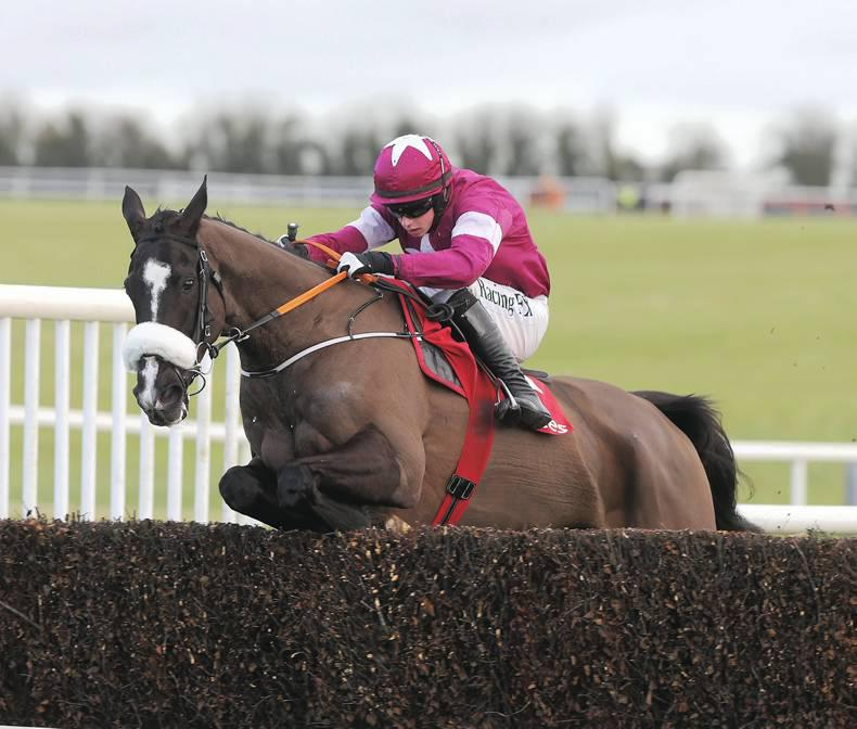 DONN McCLEAN: Don Cossack still on the golden track