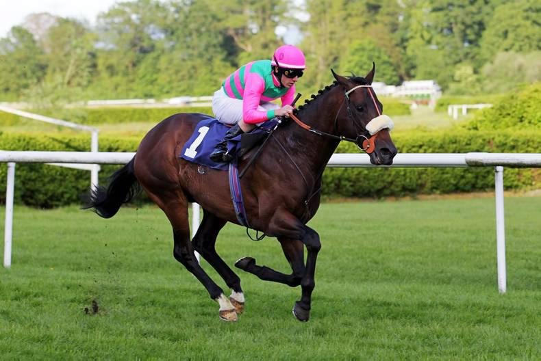 SIRE REVIEW: Dubawi's dual classic star Worthadd