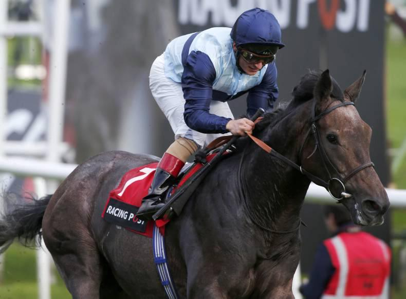 SIRE REVIEW: Kingston Hill represents Danehill sire line