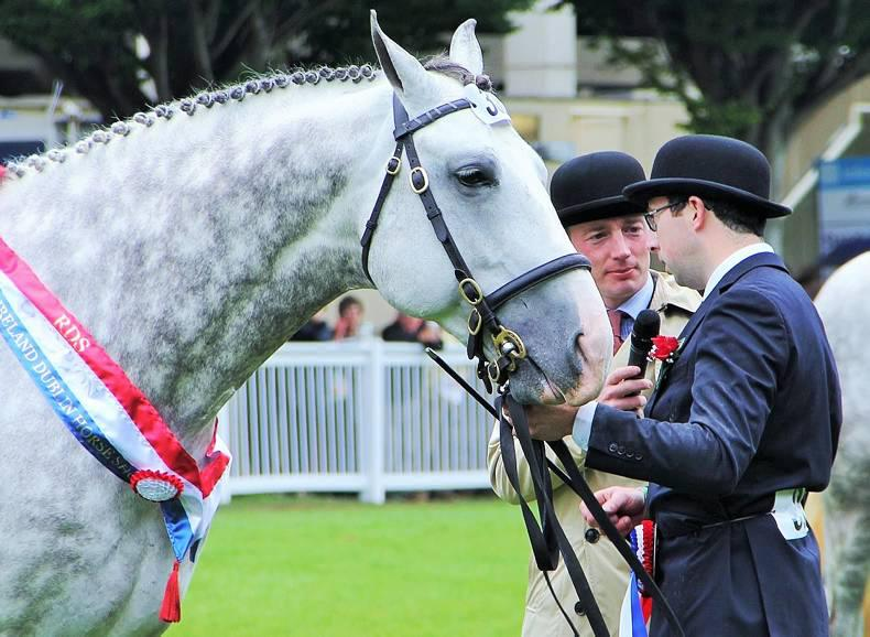 PONY TALES: Wedding bells in the air for Seamus and Aisling