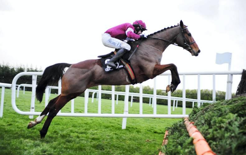 DR SIEGLINDE MCGEE: Irish-bred and French-bred horses dominate at the festival