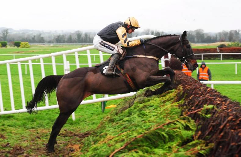 Black Hercules one of 13 Willie Mullins entries in National Hunt Chase