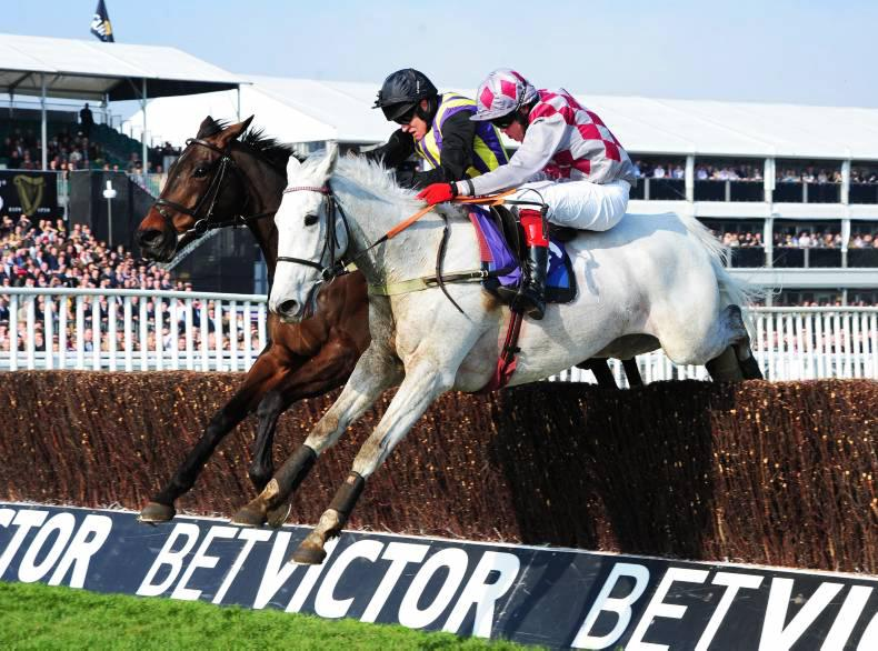 BRITISH PREVIEW: Coologue could take a lot of catching