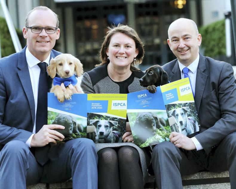ISPCA to increase inspectorate in cruelty crackdown