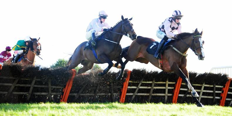 THURLES WEDNESDAY: Swamp Fox gets through the ground