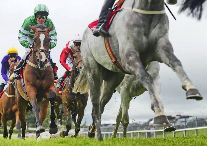 Limini flies at Fairyhouse for Willie Mullins