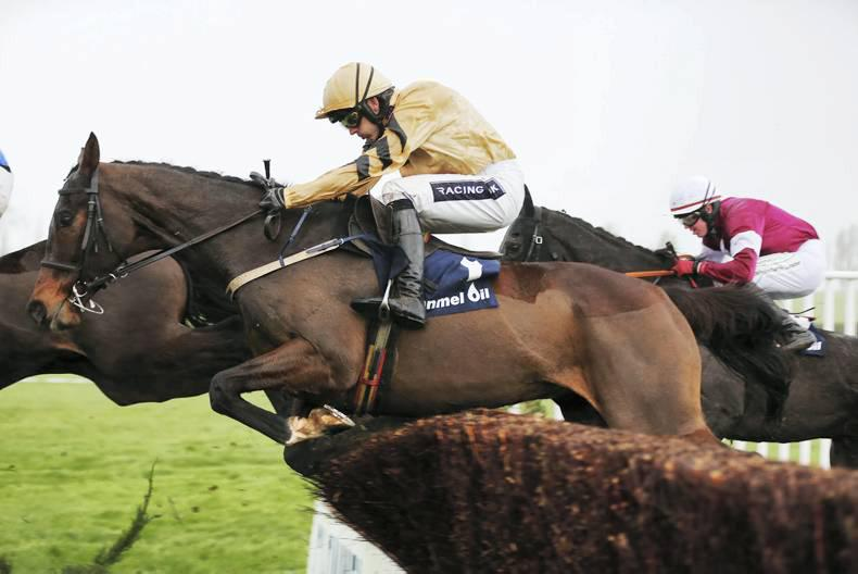 PEDIGREE NOTES: The weekend's National Hunt graded winners