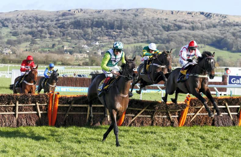 DITCHEAT DIARY: Olympic form at Ditcheat