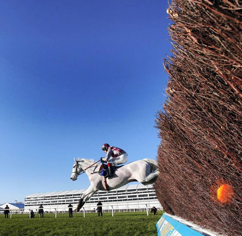 Will Vautour go all the way?