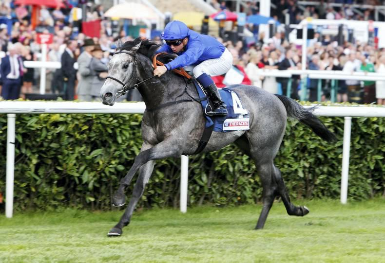 SIRE REVIEW: Outstrip : Standing at Dalham Hall Stud