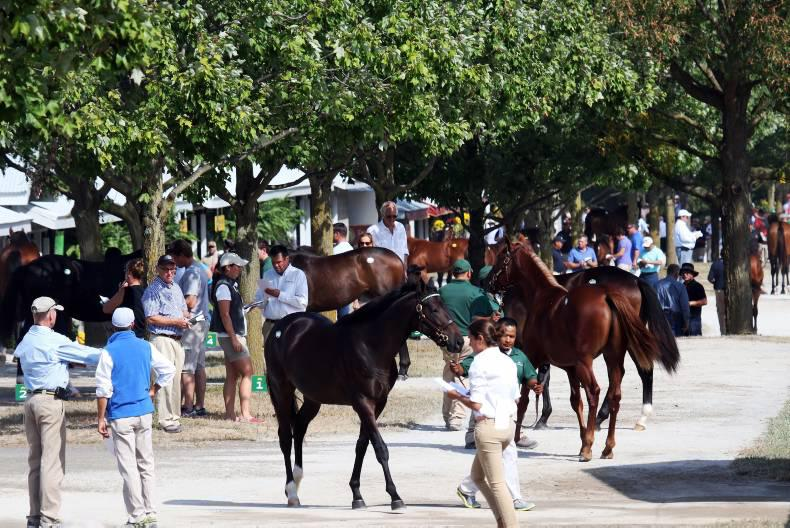AUSTRALIA: New records at Classic sale
