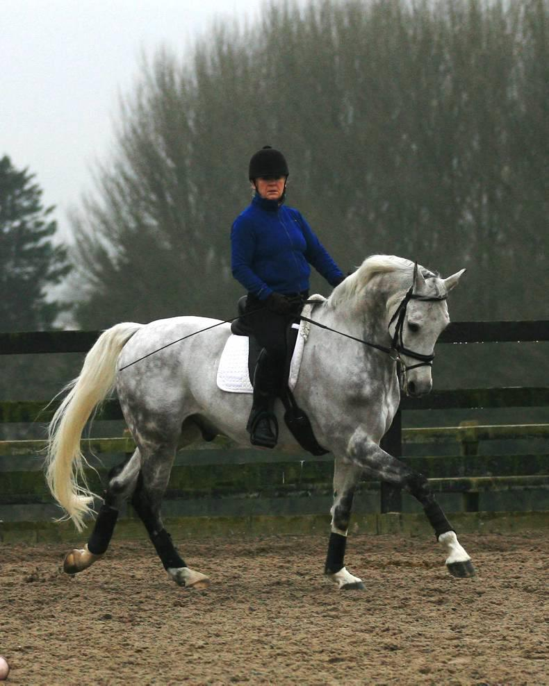 PONY TALES: Gaffney debuts her new para mount
