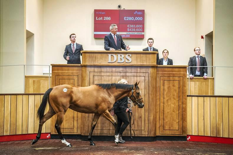 DBS to renamed Goffs UK